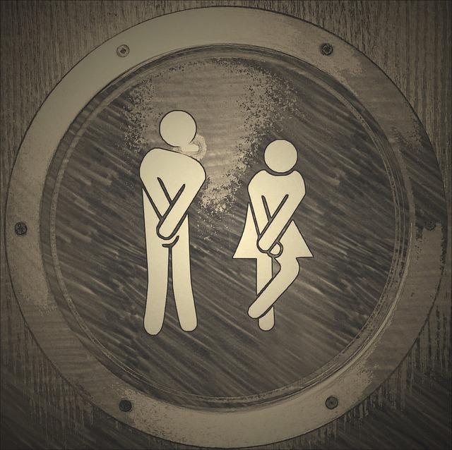 ドームコンサートトイレ事情まとめ【待ち時間・空いているトイレなど】随時更新